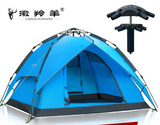 成都租帐篷,成都哪儿可以租帐篷,成都租露营帐篷